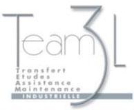 team3l1